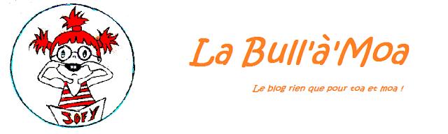banniere, bull à moa, blog, perle des loisirs